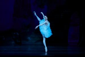 лебединое озеро балет (5)